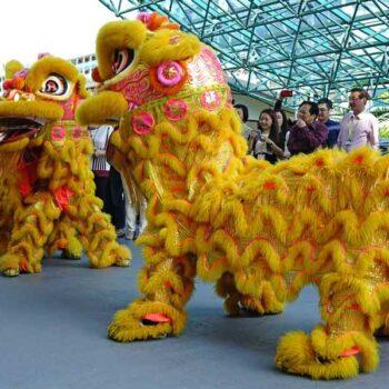 tanzende Drachen auf Bangkoks Straßen die zur Feierlichkeit des Chinese New Year gehören