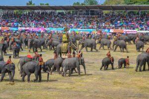 Aufmarsch der gepanzerten Elefanten von Surin beim berühmten Elefantenfest