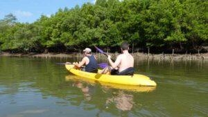 Touristen mit dem Kayak im Mangrovenwald bei Krabi