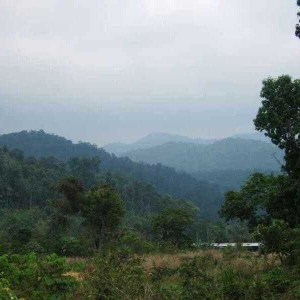 Koh Chang Reiseninformationen