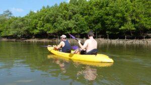 Eine Kayak Tour in Krabi durch die Mangroven ist sehr empfehelnswert