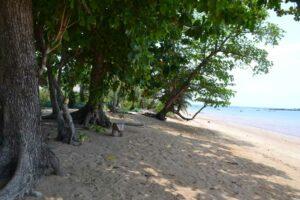 Der Strand von Koh Libong, Ihr Inselhopping Erlebnis