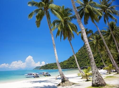 Inselhopping Koh Samui Thailand Spezialisten