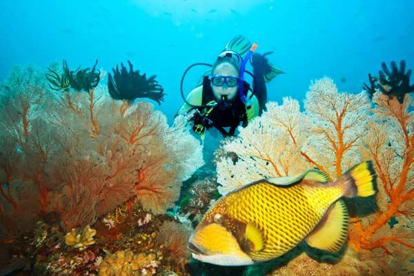 koh phangan tauchen, reiseblog thailand, inselhopping