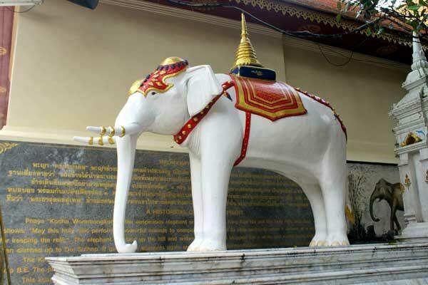 Weißer Elefant, Wat Doi Suthep, Chiang Mai, Thailand