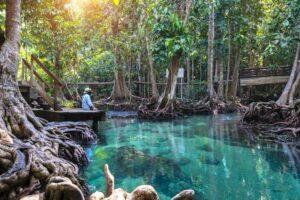 Emerald Pool Krabi rundreise Trang