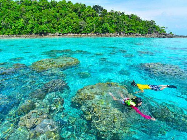 Lernen Sie heute die traumhafte Unterwasserwelt der Surin oder Similan Inseln kennen.