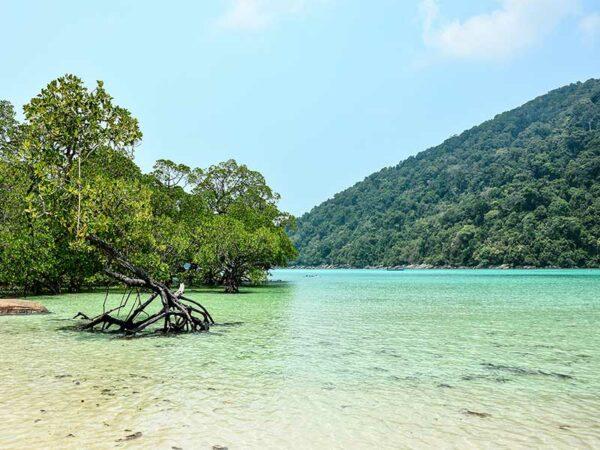 Die Surin Inseln sind bekannt für traumhafte Schnorchelspots.