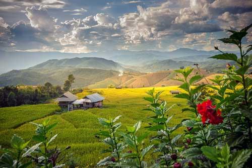 Chiang Rai Reiseführer