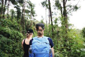 Trekking Gruppe auf dem Doi Pui Trekking in Chiang Mai