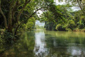Der Sok River im Khao Sok Nationalpark