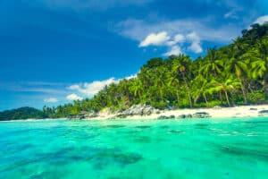 Blick vom türkis blauen Wasser auf den palmen gesäumten Strand von Koh Samui