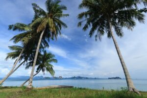 Sandbox Reise zu den Kokosnusspalmen am Meer, Koh Yao Noi, Phang Nga, Thailand