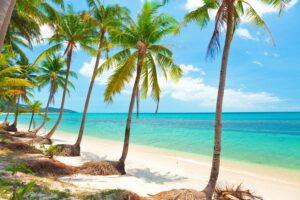 tropischer-Strand-mit-Kokosnuss-Palmen.-Koh-Samui,-Thailand